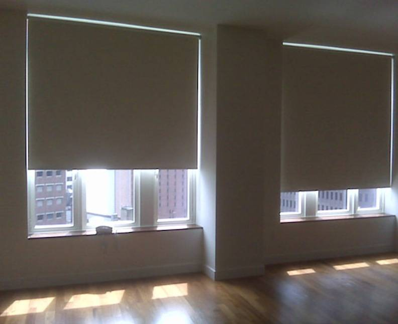 Roller Shades Blackout Xpo Blinds